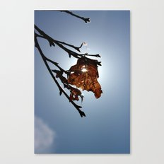 Rising Spring Canvas Print