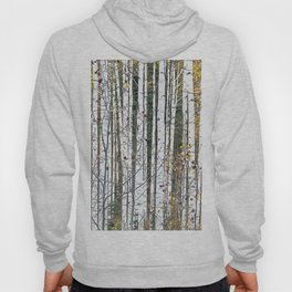 Aspensary forests Hoody
