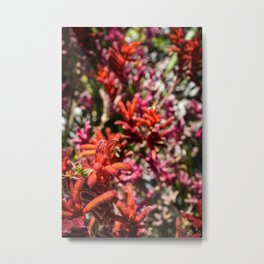 Flowers in Pink and Red Metal Print