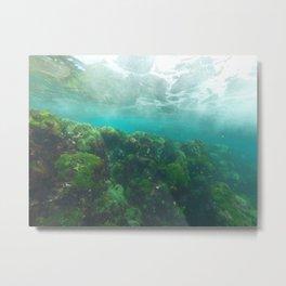 LHI Underwater Green Metal Print