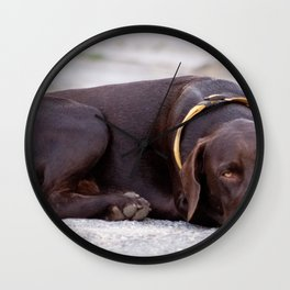 the hound dog Wall Clock