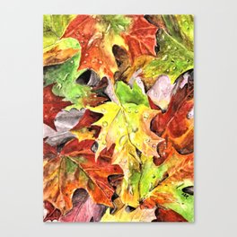 Autumn Leaves with Raindrops, Fall Art, Colorful Leaves, Anne Hockenberry Canvas Print