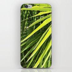 Up Close iPhone & iPod Skin