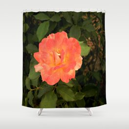 Ash Laden Leaves Shower Curtain