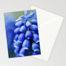 Grape Hyacinths Stationery Cards