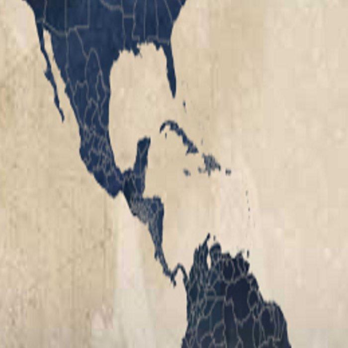 World Map Gray Leggings