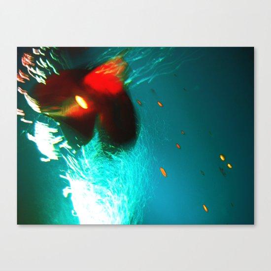 fish...:) Canvas Print
