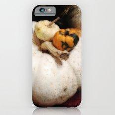 White Pumpkin | Three Pumpkins | Vintage Thanksgiving | Harvest Art Slim Case iPhone 6s