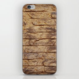 Gold Bars iPhone Skin