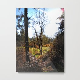Nature's Backdrop- Pacific Northwest Morning Metal Print