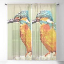 Bright Orange Sheer Curtain