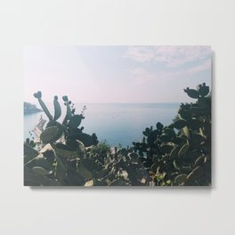 Cacti on the Mediterranean Metal Print