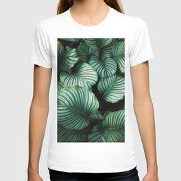 Green Palm Tree Leaf T-shirt