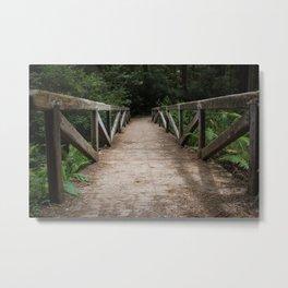 Quiet Trail Metal Print