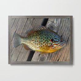 Fish On Wood Metal Print