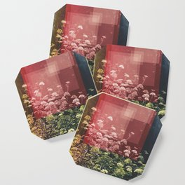 Abstract Finding Coaster