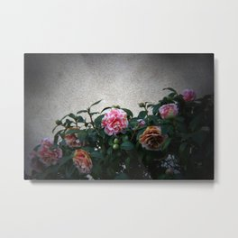 flowers on prospect ave. Metal Print