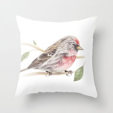Bird - Male Common Redpoll Watercolour by Magda Opoka Throw Pillow