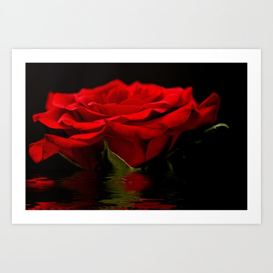 Red Rose Flood Art Print