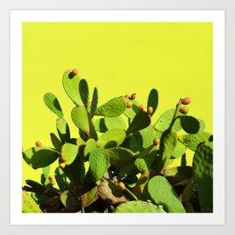 Cactus fruit & yellow Art Print