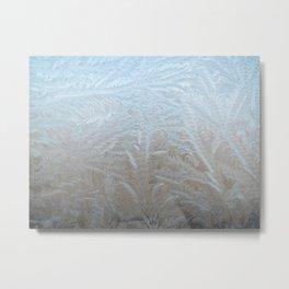 Copenhagen, Denmark | Nature Print | Ice Crystals | Winter Print Metal Print