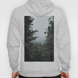 Backwoods Winter: Ponderosa Pines, Washington Hoody