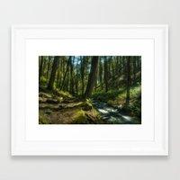 forrest Framed Art Prints featuring Forrest by Jordan Weinrich