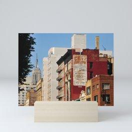 NYC Views Mini Art Print