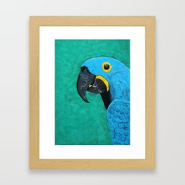 Hyacinth Macaw Gouache Painting Framed Art Print