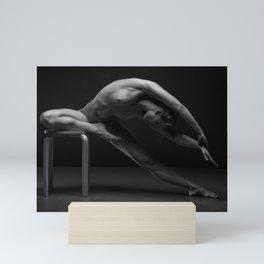 bodyscape 5564 Mini Art Print