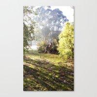 kangaroo Canvas Prints featuring Kangaroo by Nove Studio