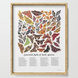 Saturniid Moths of North America Serving Tray