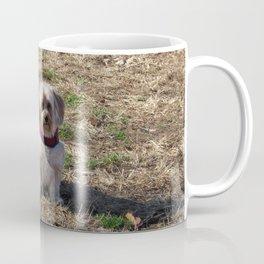 Copper on a Fall Day Coffee Mug