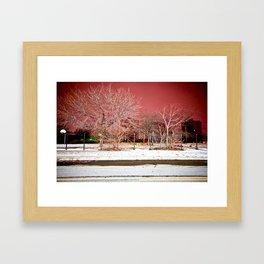 Brewster Douglas Framed Art Print