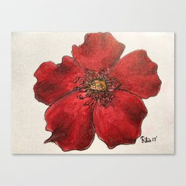 Red Winter Rose Canvas Print