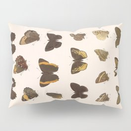 Vintage Scientific Hand Drawn Illustration Anatomy Of Butterfly Insect Patterns Biology Art Pillow Sham