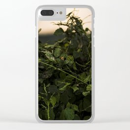 Sunset in Maui Clear iPhone Case