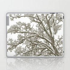 Foggy Winter Tree Laptop & iPad Skin