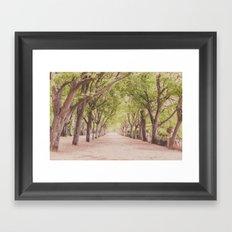 The beautiful garden Framed Art Print
