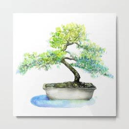 Bonsai: Zen Series 1 Metal Print