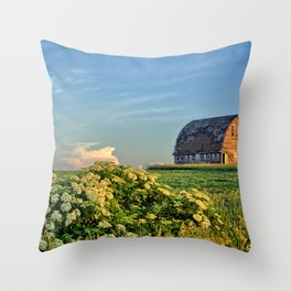 Elderberries And Old Barns Throw Pillow
