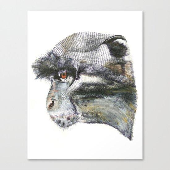 Sykes Monkey! Canvas Print