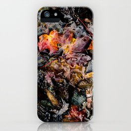 Leaves Submerged iPhone Case