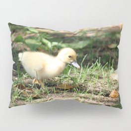Baby Duckling strolling on a lawn Pillow Sham
