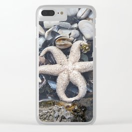 Starfish and Shells Clear iPhone Case