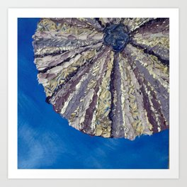 Purple Sea Urchin Shell Art Print