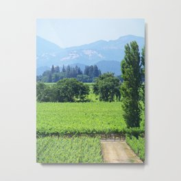 Napa Valley Metal Print