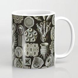 Ernst Haeckel - Tetracoralla (Corals) Coffee Mug