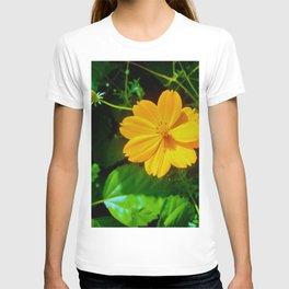 Large-flower Tickseed T-shirt
