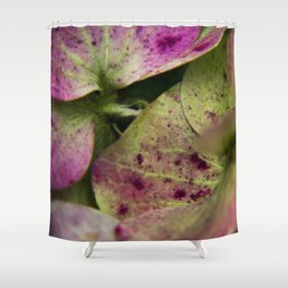 hydranjea pink and green Shower Curtain